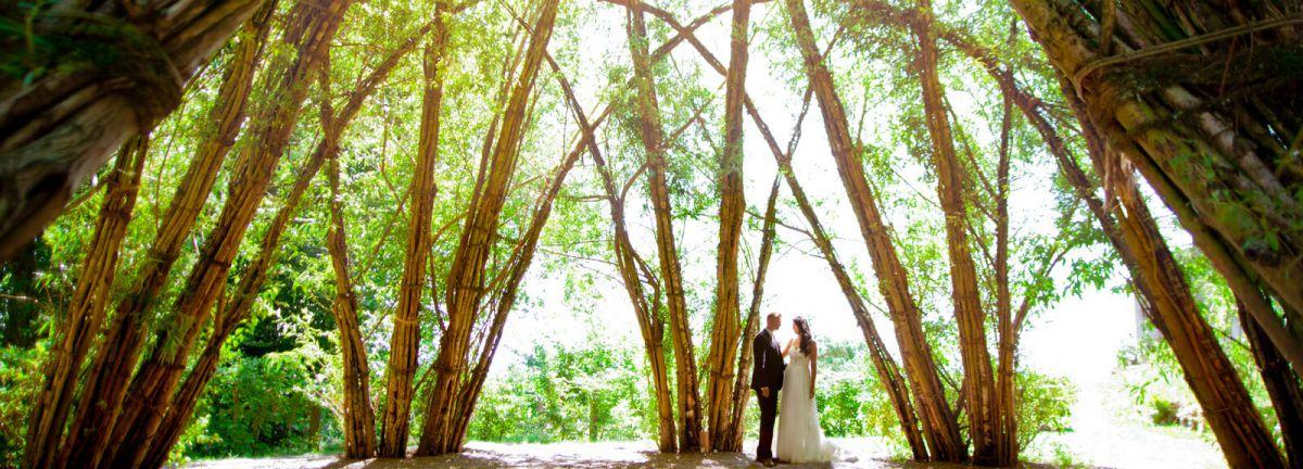 Hochzeitsfotograf Saarlouis am Weidendom